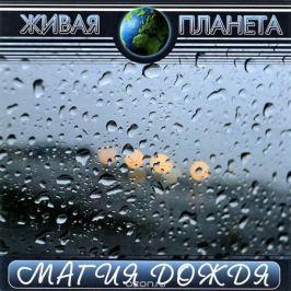 Живая планета. Магия дождя