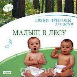Звуки природы для детей. Малыш в лесу (mp3)