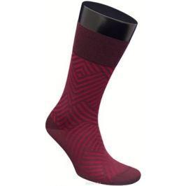 Носки мужские Гранд, цвет: бордовый, 2 пары. ZCmr156. Размер 25