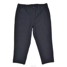 Брюки мужские Armaron, цвет: темно-синий. 304/син. Размер 76