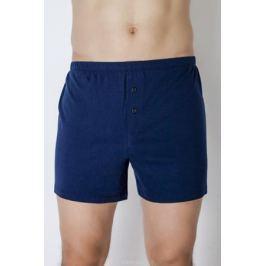 Трусы-шорты мужские Idilio, цвет: синий. THM01. Размер XL (52)