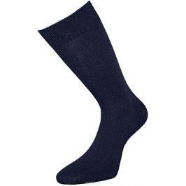 Носки мужские Гранд, цвет: темно-синий, 2 пары. ZCL0. Размер 25/27