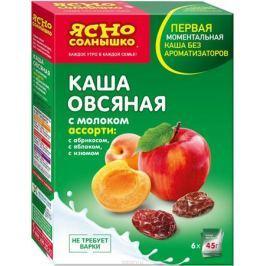 Ясно Солнышко Каша овсяная ассорти № 10 с молоком изюм абрикос яблоко, 270 г