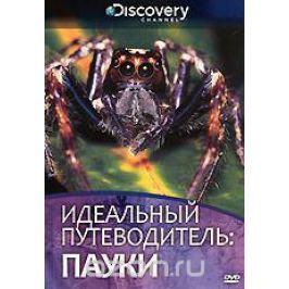 Discovery: Идеальный путеводитель: Пауки