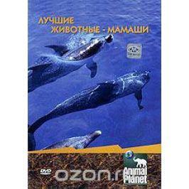 Animal Planet: Лучшие животные-мамаши