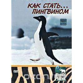 Animal Planet: Как стать... пингвином