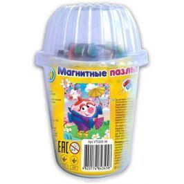 Vladi Toys Мягкие магнитные пазлы в стакане Смешарики Нюша