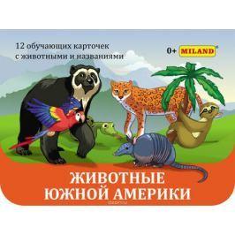 Miland Обучающая игра Животные южной Америки