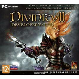 Divinity II. Developer's Cut