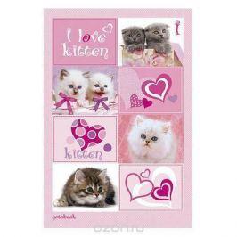Бизнес блокнот 80л А5ф 144Х208мм тониров.блок тв.переплет I Love kitten