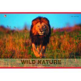 Listoff Альбом для рисования Царь зверей 40 листов